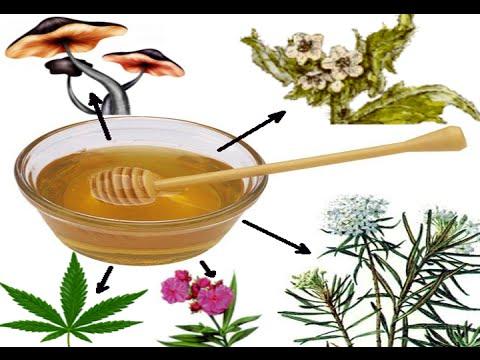 Вреден ли пчелиный мед