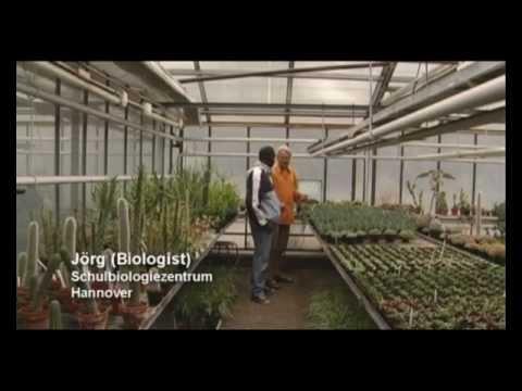 Schulbiologiezentrum Hannover