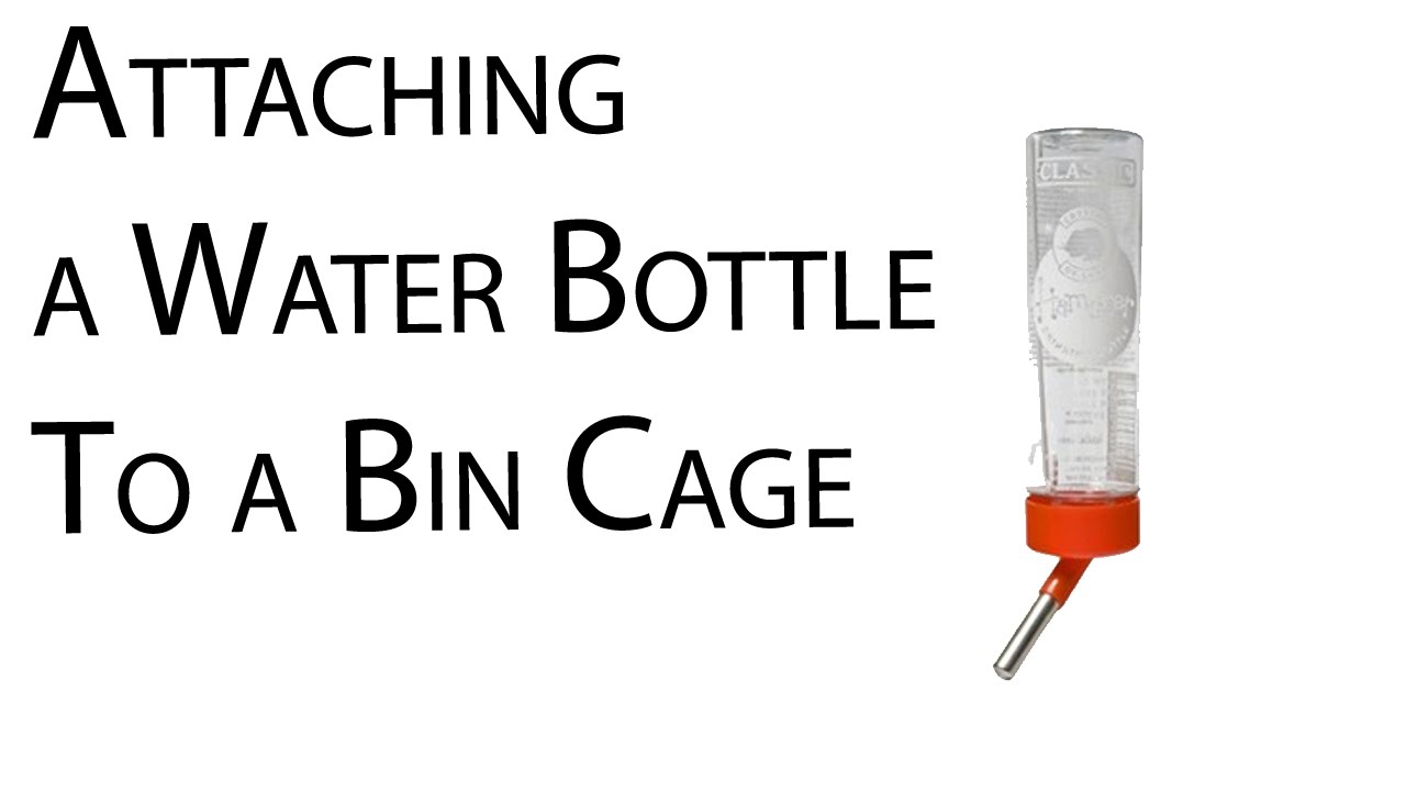 How to attach a water bottle to a bin cage