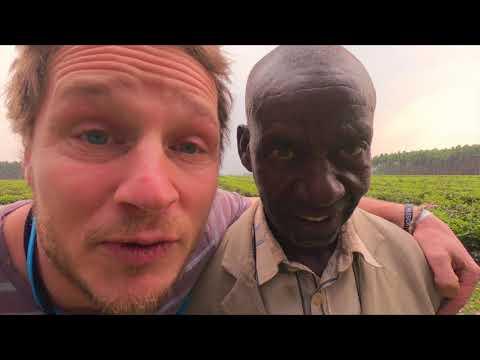 Wohnout - Sladký dřevo (OFFICIAL VIDEOCLIP)