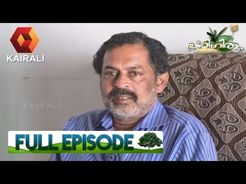 Bhoomigeetham ഭൂമിഗീതം: Ornamental Fish Farming | 14th May 2