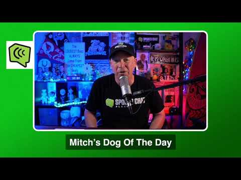 Mitch's Dog of the Day 1/21/21: Free College Basketball Pick CBB Picks, Predictions and Betting Tip