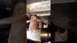 Burbujas en el gasoil  saxo Milki