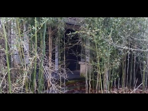 THE UNSEEN BAMBOO HOUSE