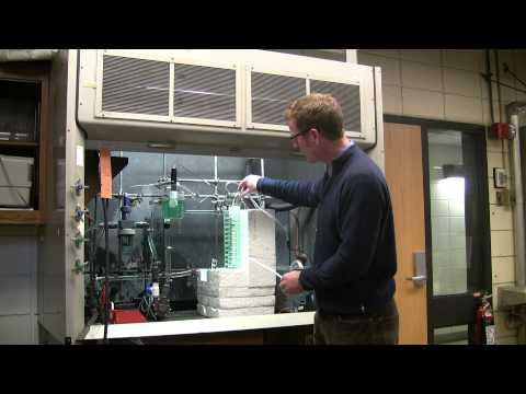 Algae to Biofuel