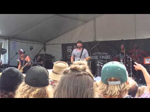 The Feelers - Super System, Rockapalooza Nixon Park Auckland 2015