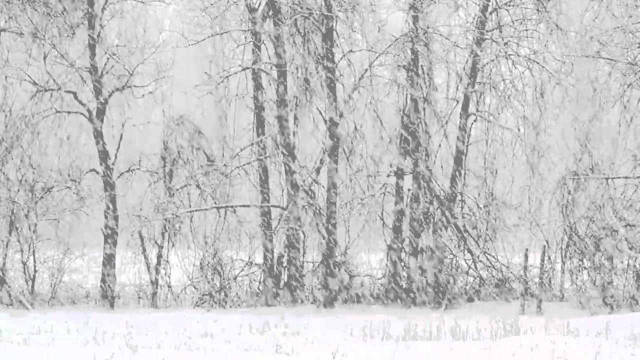 gentle snowfall * - YouTube
