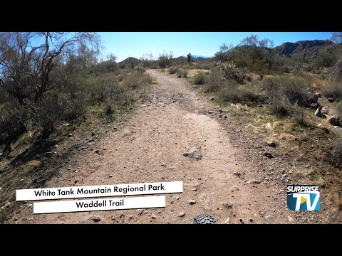 White Tank Mountain Regional Park - Waddell Trail video thumbnail