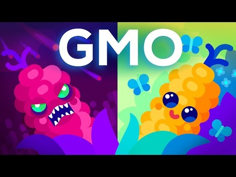 Thumbnail: Are GMOs Good or Bad? Genetic Engineering & Our Food