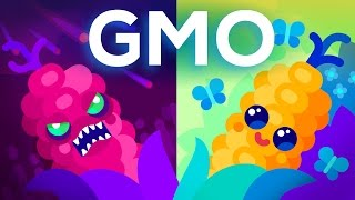 are gmos good or bad genetic engineering our food