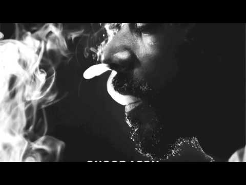 Snoop Lion - Get Away feat. Angela Hunte & Elan Atias (Reincarnated)