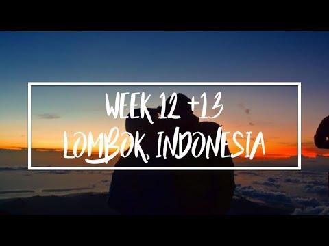 WEEK 12 + 13 // Shark fin market, climbing volcanoes & beaches in Lombok