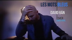 LES MOTS BLEUS - COVER - DAVID BÁN