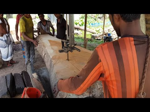Mango Wood for Shed Making at Tin Shade House।Long, Wide Shape Mango Wood Cutting।Sawmill in Asia BD