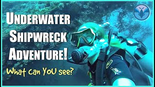 Underwater SHIPWRECK Adventure | What can YOU See? | Part 2 with Maddie and Greg
