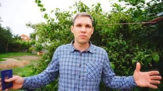 видео Прописка с видом на жительство