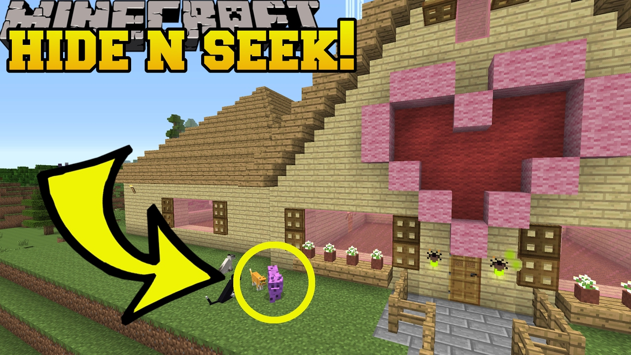 Download Minecraft: COLORFUL CATS HIDE AND SEEK!! - Morph Hide And Seek - Modded Mini-Game