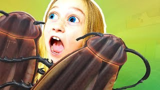 GIANT COCKROACHES IN BED⁉️ at Cabana Bay Beach Resort in Universal Orlando