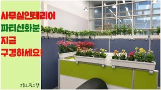 사무실화분 파티션만 있으면 식물로 정원같이 꾸밀 수 있…