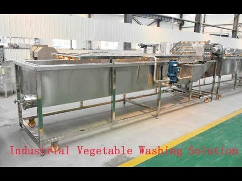 Industrial Vegetable Washing Solution Fruit And Vegetable Cleaning Machine