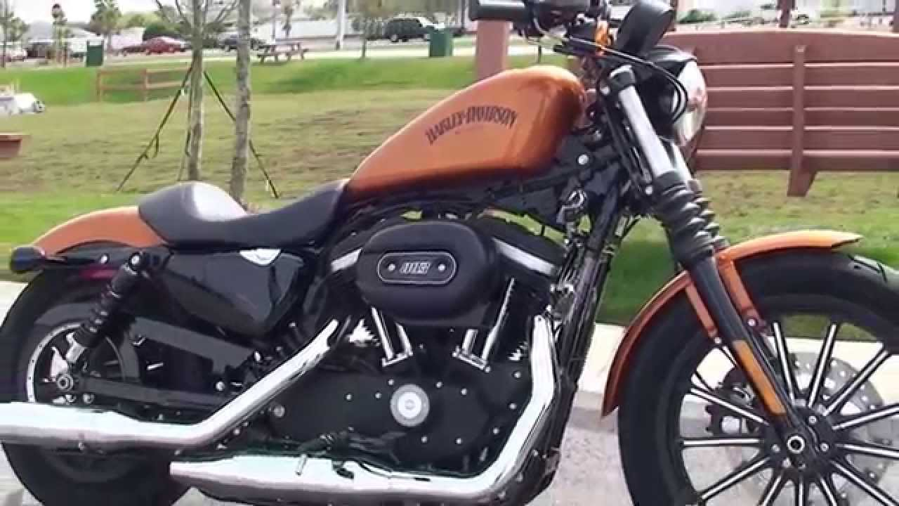 2014 harley davidson iron 883 motorcycles for sale in ft. myers