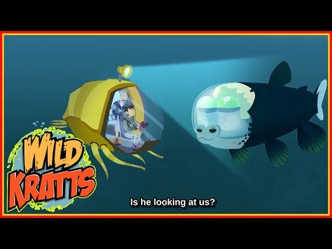 ► Wild Kratts S5 Full HD | Creatures Sea | Wild Kratts 2017 Full Episodes TV Show