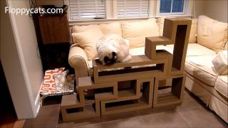 Ragdoll Cats Receive Papercut Lab Katris Cardboard Cat Scratchers for Review - ねこ - Floppycats