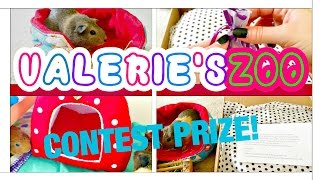 CONTEST Prize Package! - (Guinea Pig) Valerie'sZoo Thumbnail