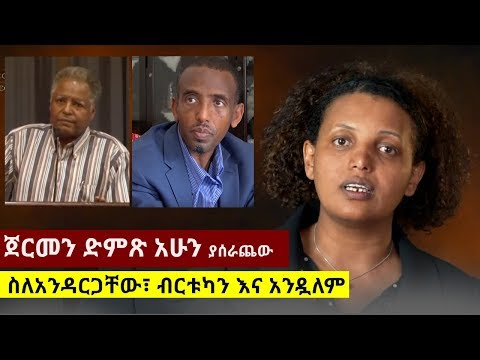 Mesay Mekonnen on METEC & EFFORT | Dr Abiy Ahmed | Azeb Mesfin | Asemelash Woldesilase from YouTube · Duration:  15 minutes 44 seconds