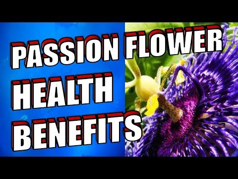PASSION FLOWER REVIEW - Amazing Health Benefits and Uses for Anxiety, Sleep & Tea