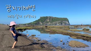 [변변한 제주살이] 광치기해변 꽃게&새우 잡기(…