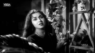 Thai Sollai Thattathe Movie Part 7 | M. G.Ramachandran | B. Saroja Devi | M. R. Radha | Tamil Movies