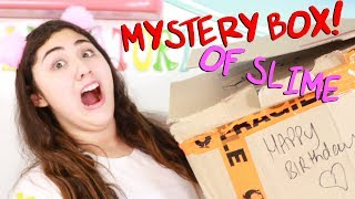 $200 MYSTERY SLIME BOX FOR MY BIRTHDAY?!?! Slimeatory #485