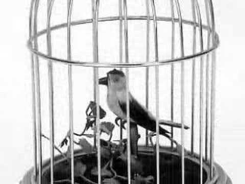 pinjre ke panchhi re - naag mani(1957)