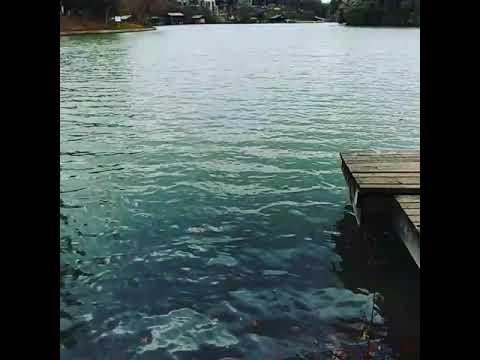 Lake at Laguna Gloria