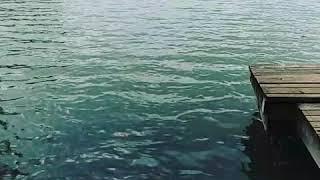 Lake at Laguna Gloria Mp3