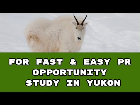 Fast and Easy PR – Study in Yukon