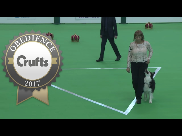 Obedience Championship - Bitches - Part 11 | Crufts 2017