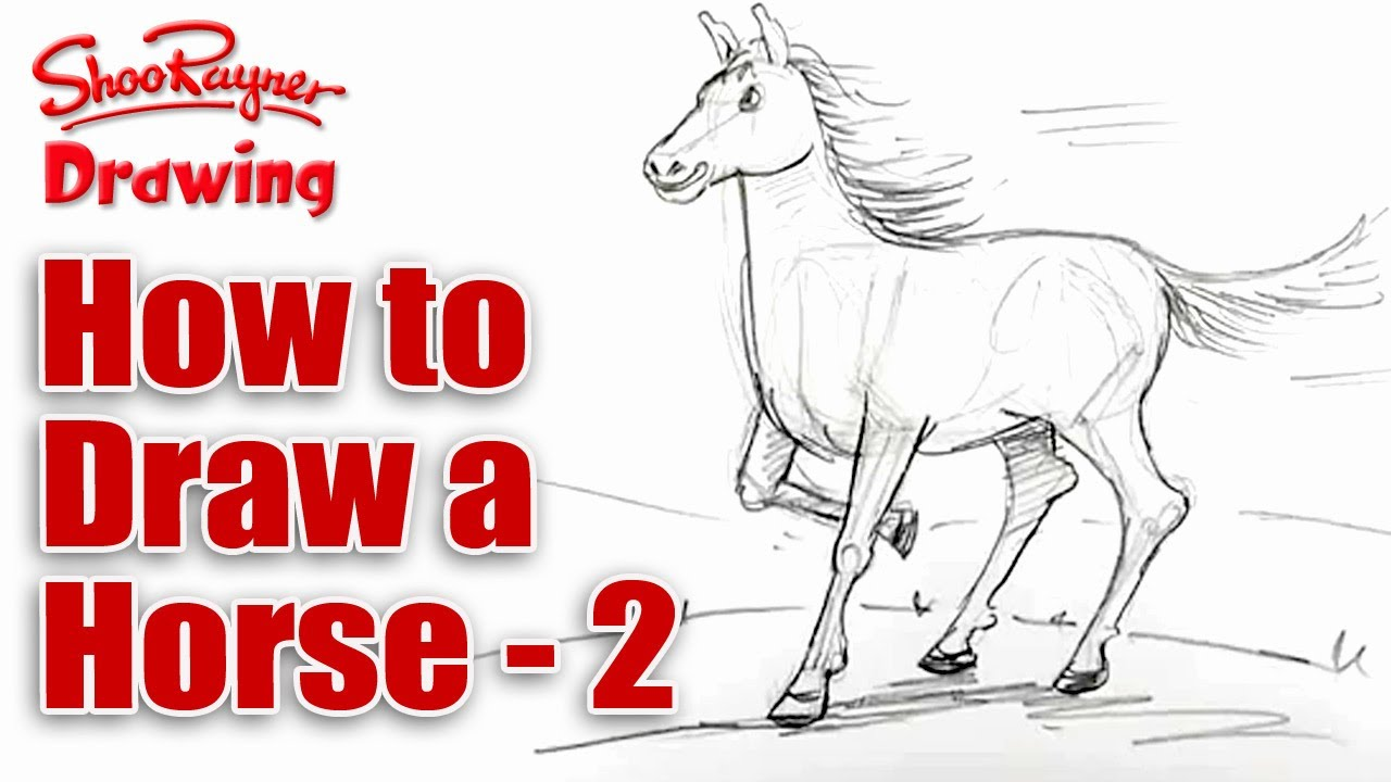 How To Draw A Horse  Spoken Tutorial