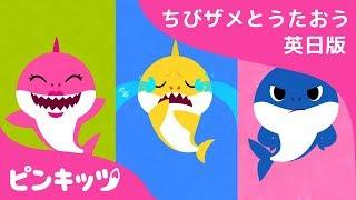しあわせな ちびザメ| サメのかぞく | ちびザメとうたおう英日版 | どうぶつのうた | ピンキッツ童謡