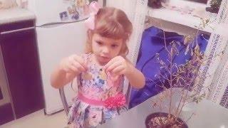 Трейлер РОЗОВАЯ КЛЯКСА(Канал Розовая клякса ориентирован в первую очередь на детей. Здесь вы найдете много интересного из жизни..., 2016-01-24T10:54:43.000Z)