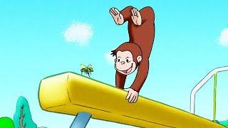 Curious George 🐵Jungle Gym 🐵Kids Cartoon 🐵Kids Movies 🐵Videos for Kids