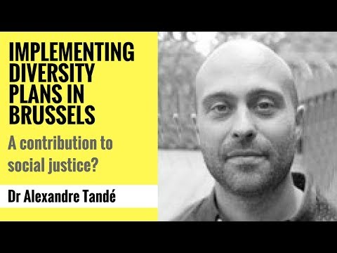 Implementing diversity plans in Brussels: A contribution to social justice?