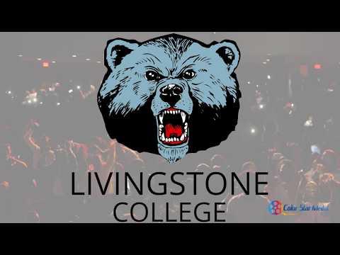 Livingstone College Homecoming Greek Step Show 2017