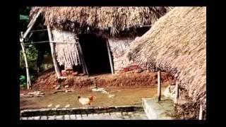 Trở về với Mẹ ta thôi Thơ : Đồng đức Bốn  Nhạc và trình bày : Trần Quang Lộc