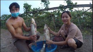 ÚP CÁ  ĐÀN CÁ TRẮM TO KHỦNG KHIẾP FISHING THÚ VUI SĂN BẮT