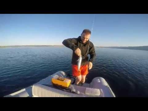 ADRIATIC FISHING SUMMER 2016