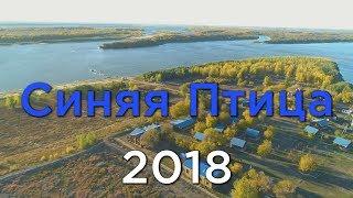Анонс Нового Фильма о Рыбалке на Нижней Волге