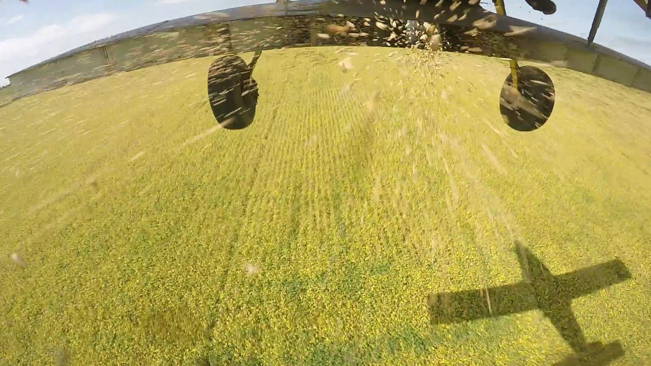 Aerially Seeding Cover Crops