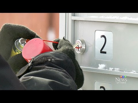 Community Mailboxes Frozen Shut Leave Ottawa Customers Frustrated